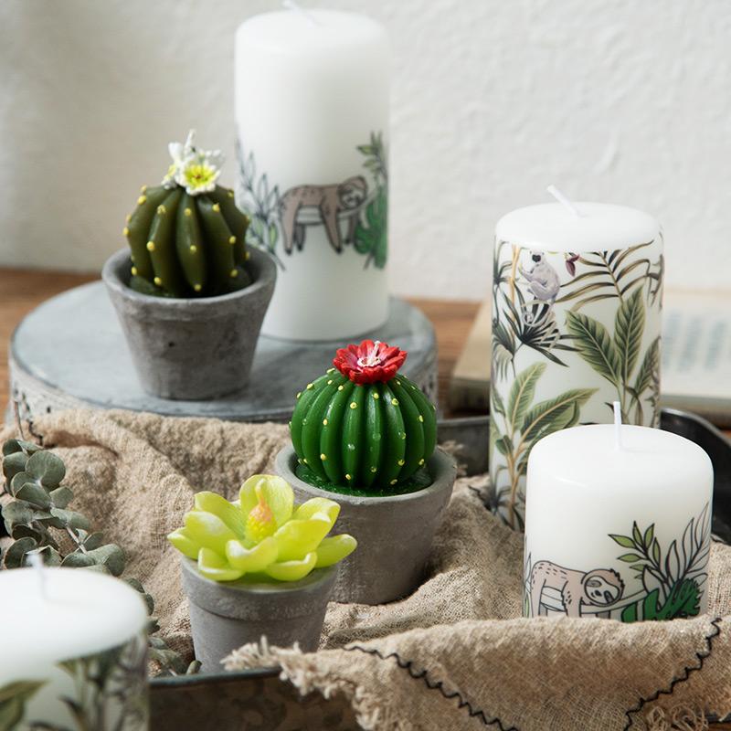 Тропическая свеча